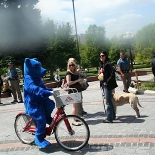 big_blue_bear_mascot_rides_bike